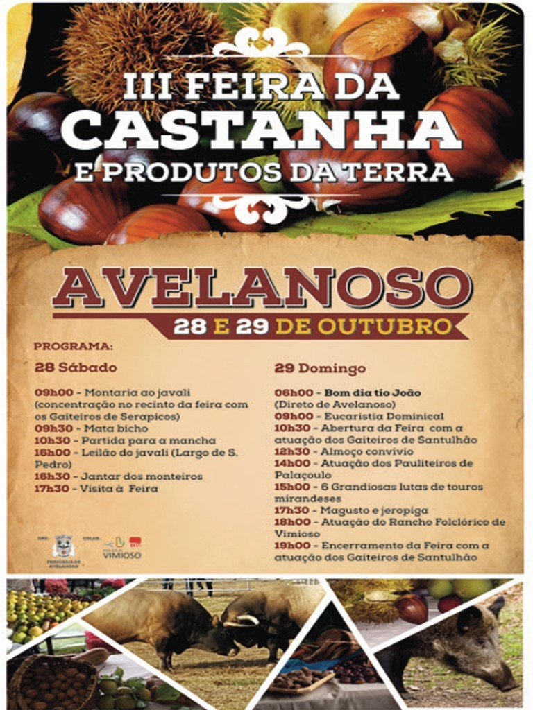 Cartaz castanha 2017  1 720 2500  medium  1 1024 2500