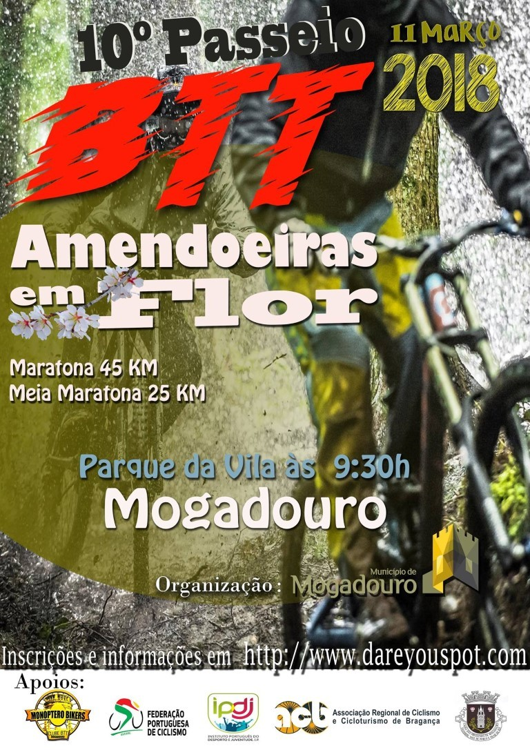 Btt amendoeiras  medium  1 1024 2500